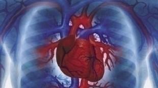 despre inima ta